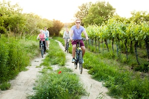 Vienna Water And Wine - A pleasure tour by bike and foot