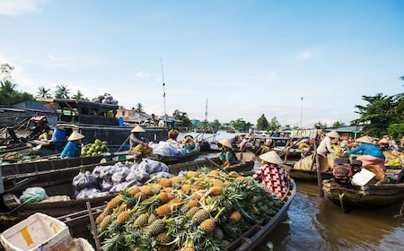 Day view of the Mekong Floating Market