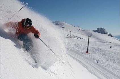 Cardrona Alpine Resort Ski powder.png