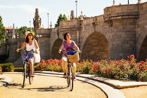 Private Madrid Bike Tour: The Local Way