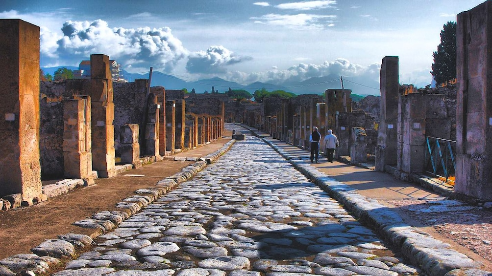 Apri foto 3 di 3. Day view of the Pompeii Archaeological Park