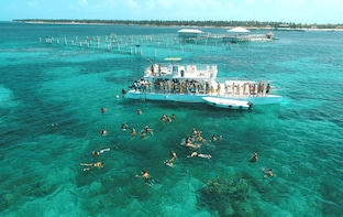 Snorkeling Cruise with Stingray Encounter - Marinarium