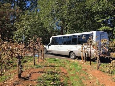 A tour bus in a vineyard