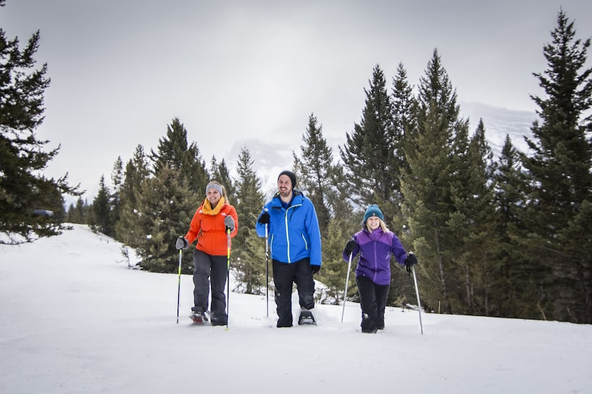 Show item 5 of 9. Snowshoeing group in Banff