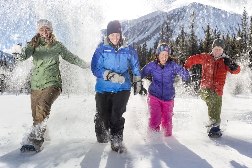 Show item 3 of 9. Snowshoeing group in Banff