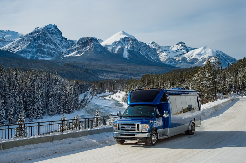 Show item 5 of 9. Full-Day Discover Lake Louise Winter Tour
