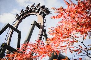 Billetter til Thorpe Park Resort