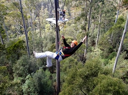 Guided Zip line Tour