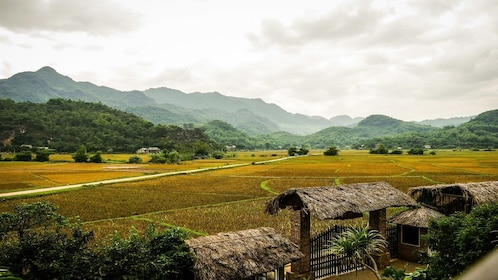 Field and mountains in Mai Chau