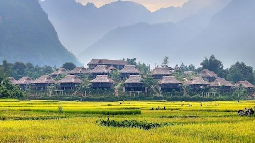 Field and village in Mai Chau