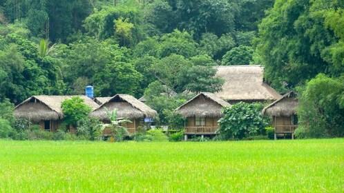 Huts in Mai Chau