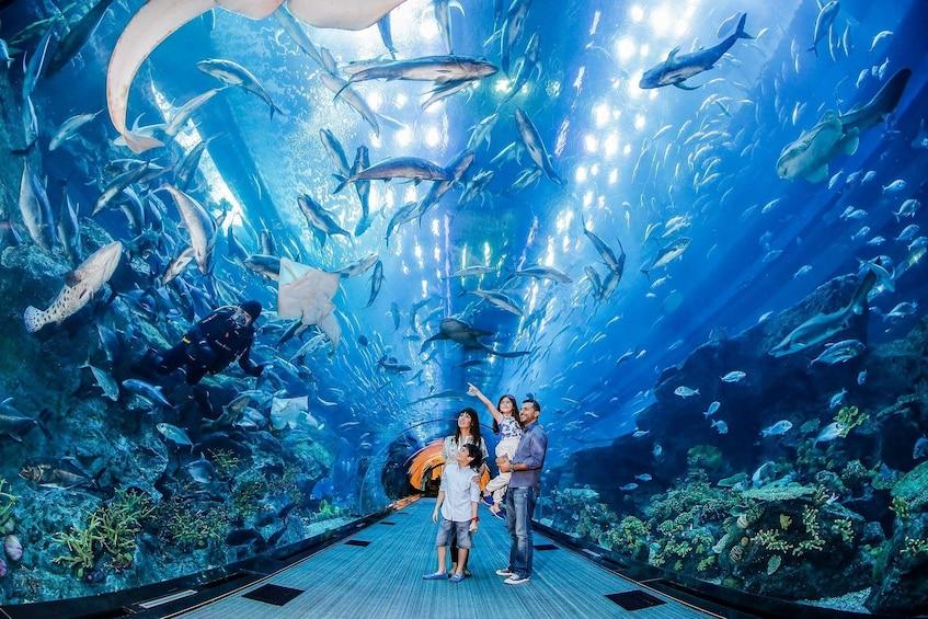 Family visits the Dubai Aquarium & Underwater Zoo