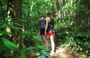 2-Day Khao Sok Jungle Safari from Krabi with Overnight Stay