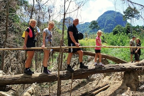 2-Day Khao Sok Jungle Safari from Krabi with Overnight Stay
