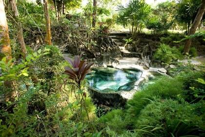 View of the Waree Raksa Hot Spring Spa in Krabi Rainforest