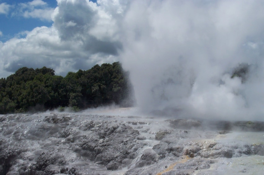 Show item 1 of 4. 1-Day Rotorua Tour from Auckland with Options