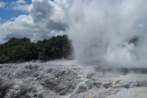 Rotorua Tour from Auckland with Optional Extras