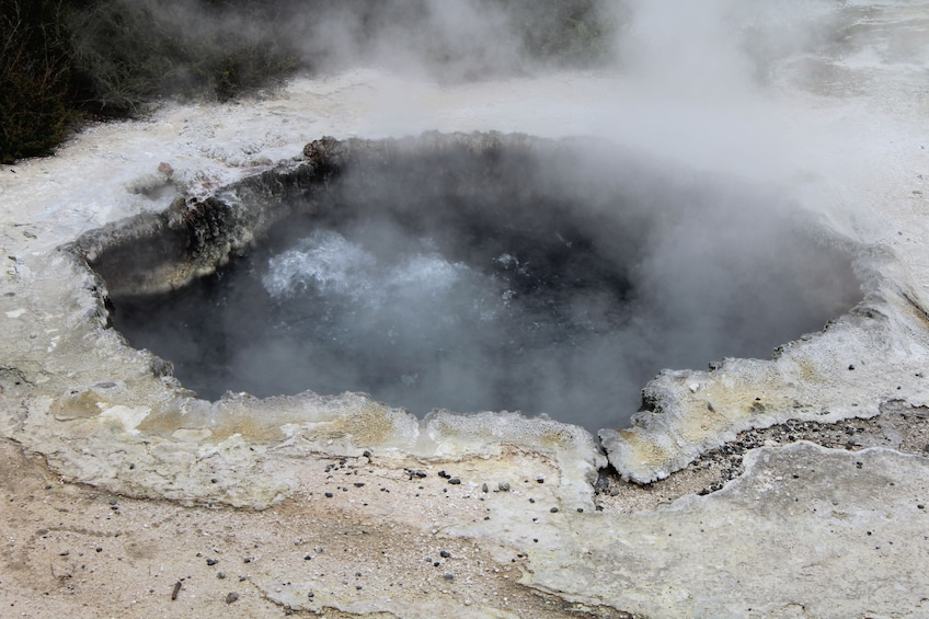 Show item 3 of 4. 1-Day Rotorua Tour from Auckland with Options