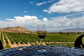 Valle De Guadalupe With Wine Tasting