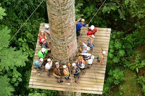 Jaco Beach and Los Suenos Zip Line Canopy Tour