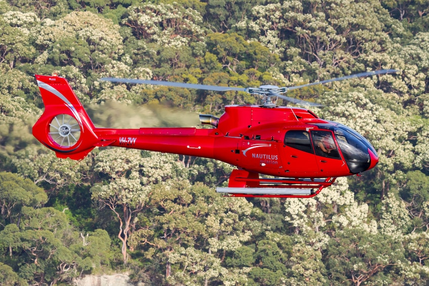 Helicopter tour in Australia