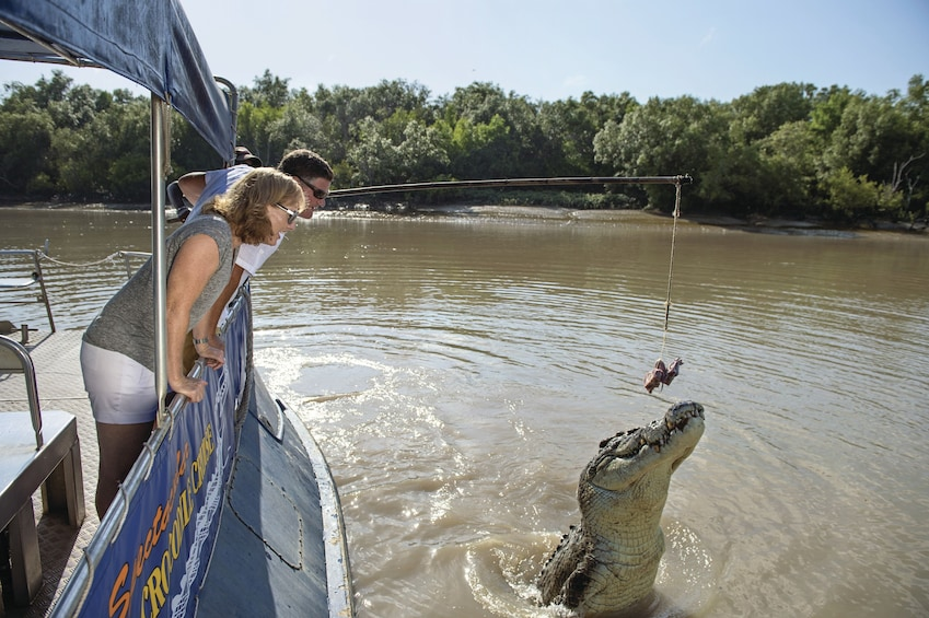 Couple leaning over the railing of a boat while feeding a hungry crocodile meat on a stick on a river tour in Australia