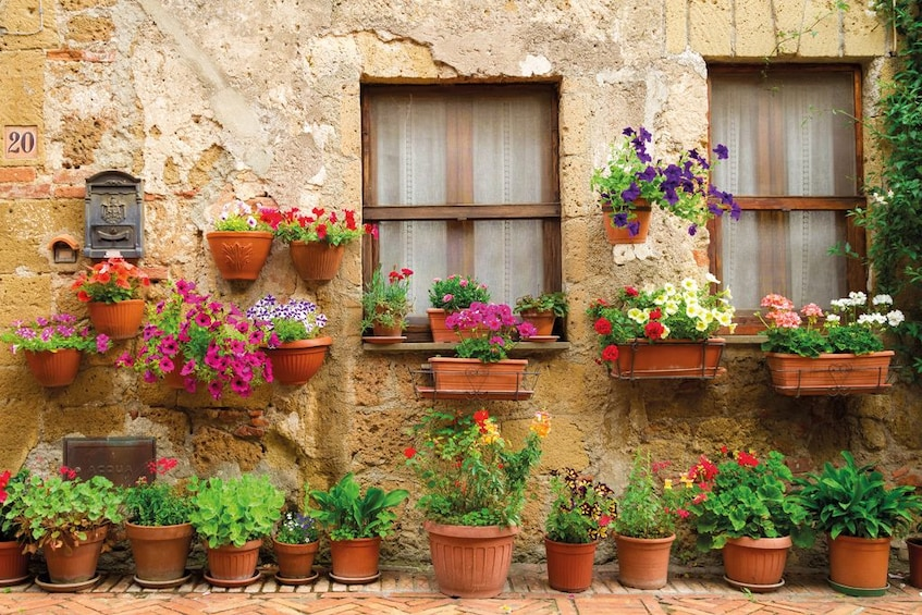 Show item 3 of 10. Beautiful flowers in clay pots on the side of a building in Chianti
