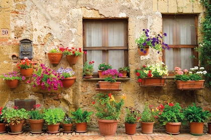 Beautiful flowers in clay pots on the side of a building in Chianti