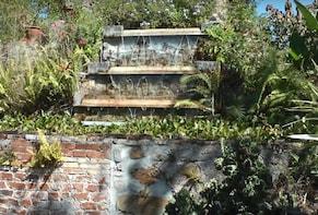 St. George Village Botanical Garden in St. Croix