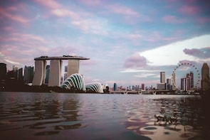 Private Custom Designed Singapore Airport Layover Tour