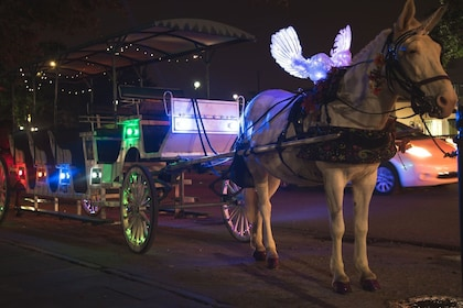 Horse-drawn carriage at night in New Orleans