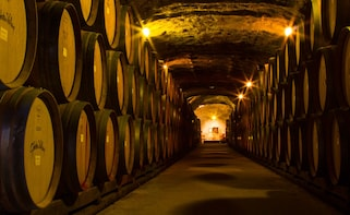 Classic Wine Tour - with cheese platter & glass of wine