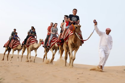 Group camel ride with guide in the Lahbab Desert