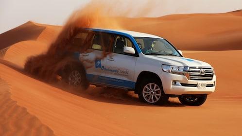 Desert Safari 7.jpg