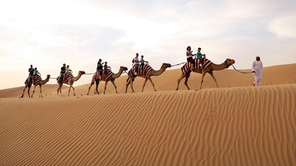 Show item 2 of 10. Dubai Morning Safari: Red Dunes, Sandsurf, Camels & Brunch