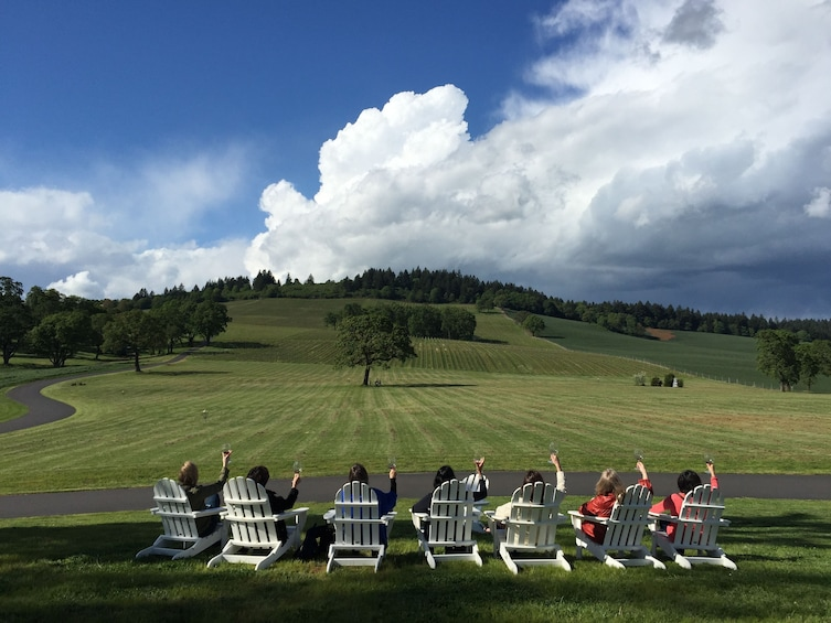 Group sitting on wine lawn chairs holding up wine glasses while on the Willamette Valley Wine Tour