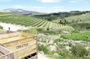 Best of Hemel-en-Aarde Wine Cool Climate Wine Valley