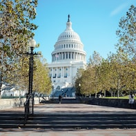 Washington DC Half-Day Tour with US Capitol Priority Access