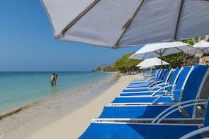 Full-Day Isla del Encanto