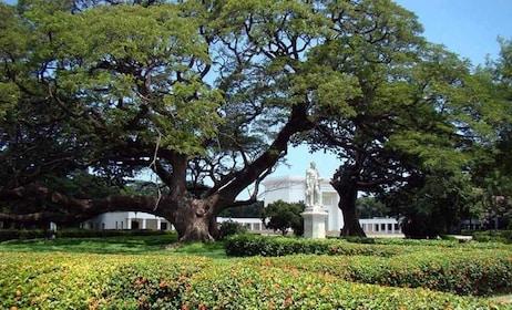 quinta-san-pedro-alejandrino-garden.jpg