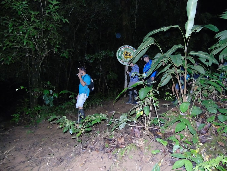 Show item 6 of 6.  Nativos Corcovado Night Tour   in Drake Bay /CostaRica