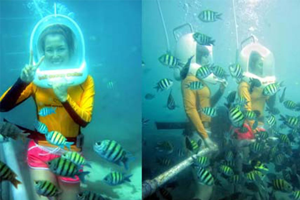 Underwater Life at Ocean Walker with Relaxation Time Spa