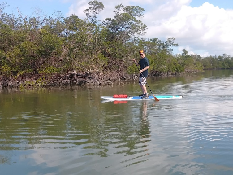 Show item 4 of 4. Man paddle boarding during the day in Naples