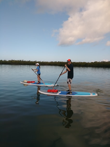 Show item 2 of 4. Paddle boarding in Naples