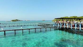 Full-day white beach baru by boat