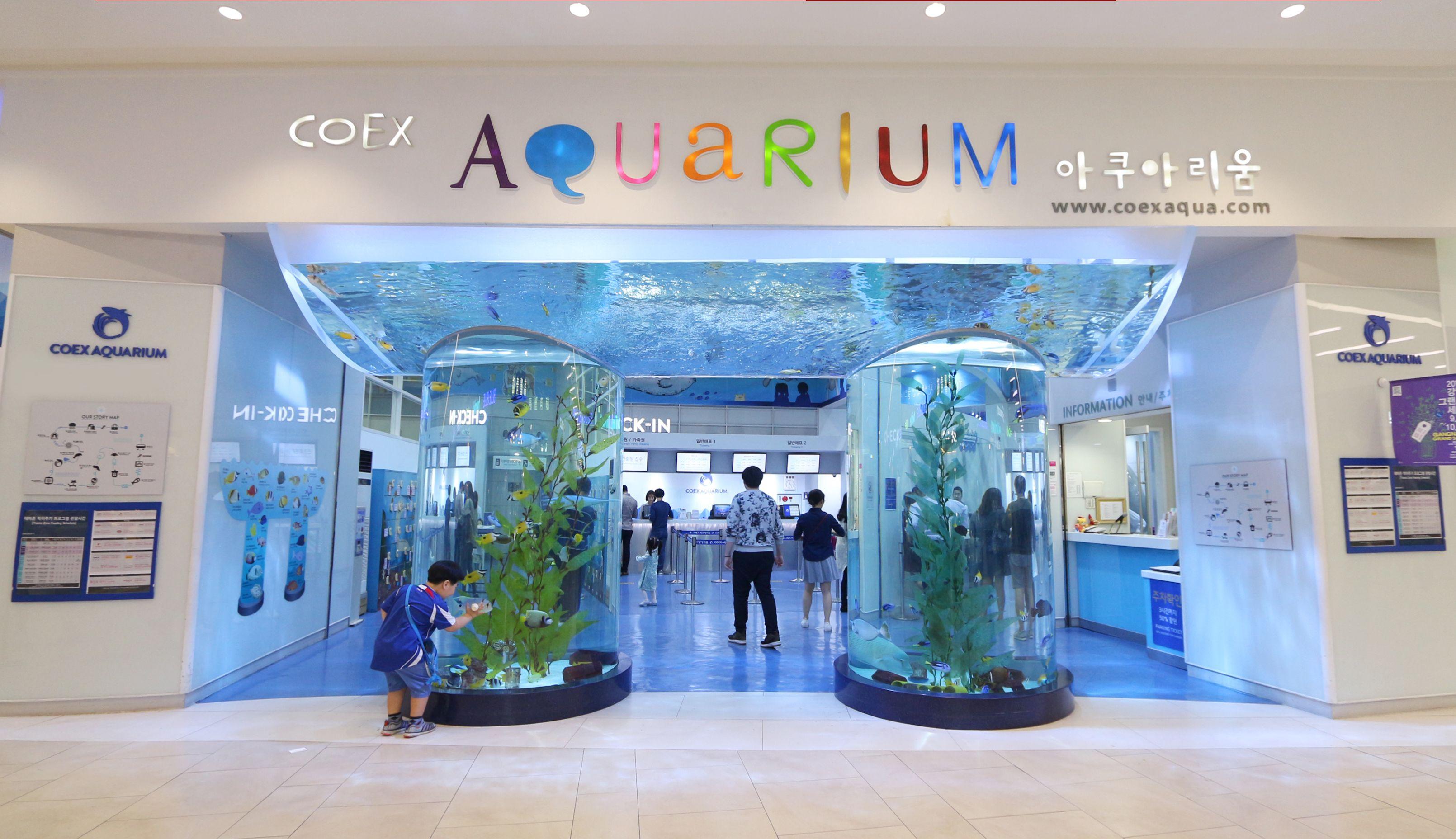 View in front of the COEX Aquarium in Seoul, South Korea