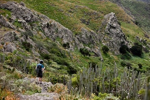 3-Hour Hiking Route at Roque Taborno in Tenerife