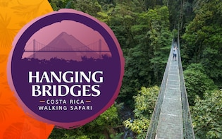 Arenal Hanging Bridges and Fortuna waterfall hike with Lunch