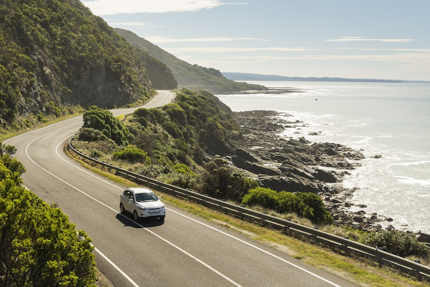 Show item 3 of 5. Great Ocean Road Private Day Tour