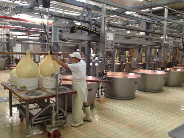 Show item 3 of 8. Parma: Parmigiano Reggiano Cheese Tasting Tour